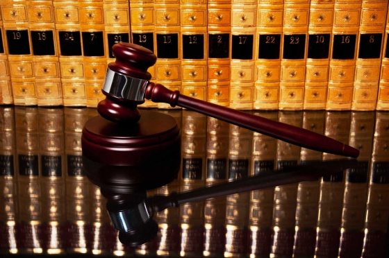 Many Bound Leather Books atop a rich mahogany table form a textured background behind a posed and eager gavel.